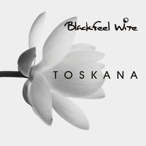 Blackfeel Wite - Amnesia