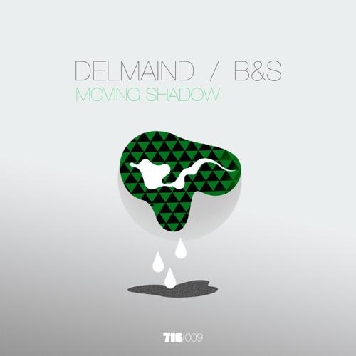 7.1.6.Label - B&S-DelMaind - Moving Shadow EP - 06 DelMaind - B&S - Birds