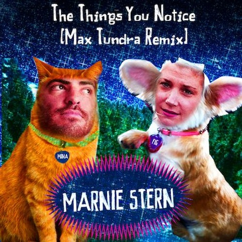 Marnie Stern: The Things That You Notice (Max Tundra Remix)