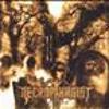 Necrophagist - Seven
