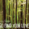 Go Find Your Love