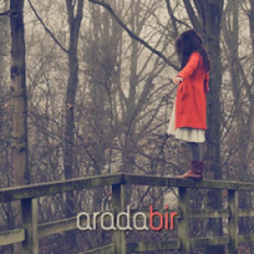 aradabir 05/01/2011
