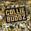 Tomorrow's Another Day-Collie Buddz-Dubsta Re-Mix