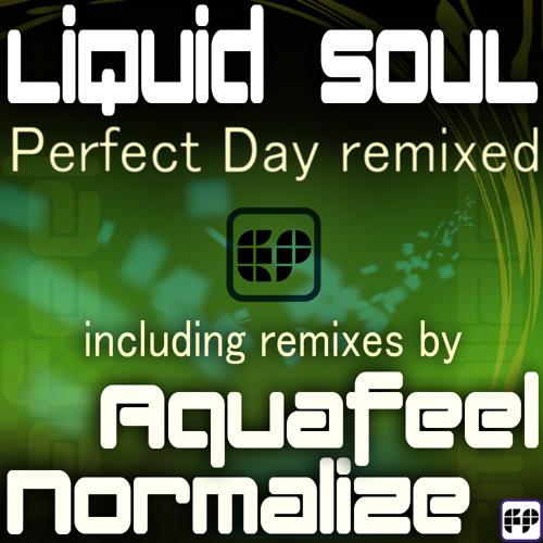 Liquid Soul- Perfect Day (Normalize remix)