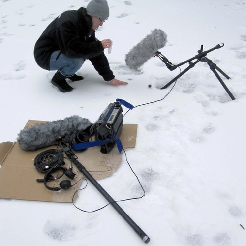 Sleds, Crunching Snow, Breaking, Cracking, Ice, and Frozen Hydrophone Recordings
