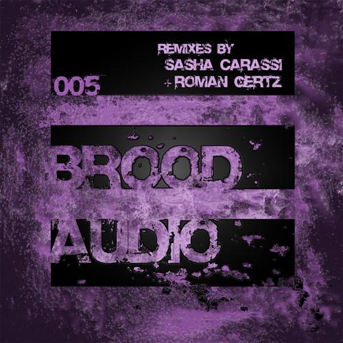 Erphun - Brood2 (Sasha Carassi Remix) [Brood Audio]