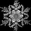 Antonio Vivaldi -The Four Seasons - Winter (Leo Borges Remix)
