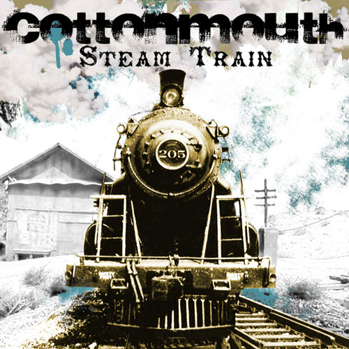 Steamtrain   (Released on Dub War Recordings) !!!OUT NOW!!!