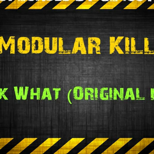 Modular Kill - Funk What (Original Mix)