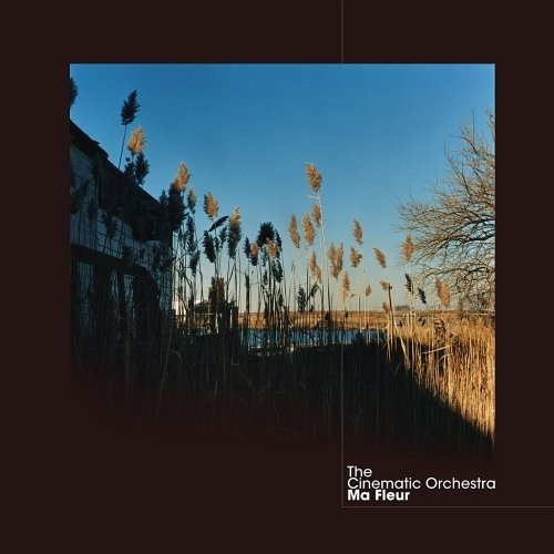 The Cinematic Orchestra - Build a home (remix)