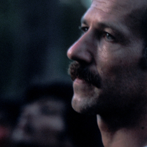 Herzog's Dream