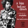 a kiss before dawn - a tribute to mulatu astatke & the heliocentrics