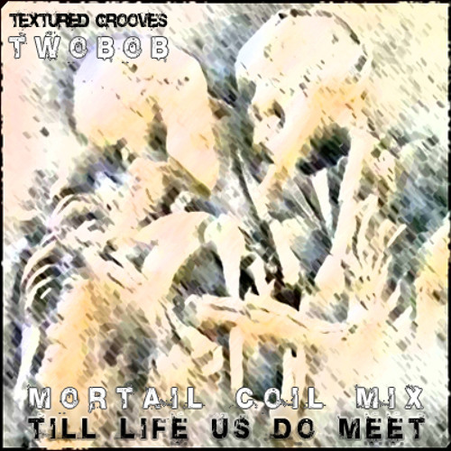 """Textured Grooves"" Till life us do meet (Twobob mortal coil mix)"