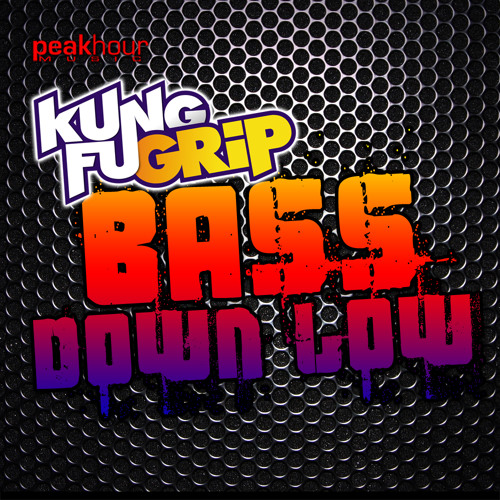 KungFu Grip - Bass Down Low (DJ Exodus & Leewise Remix)  **#26 on Beatport**