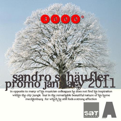 Sandro Schäufler Promo January 2011