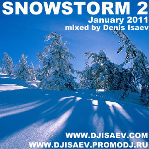 SNOWSTORM 2 (January 2011)