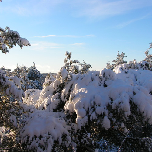 A Winter Hymn (Newer version)