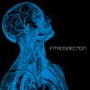 Musik Dealer - INTROSPECTION (Promotional Mix 2011)