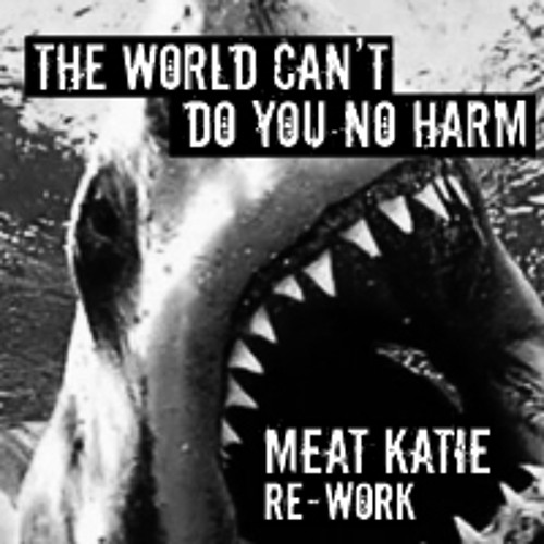 D.I.M Vs Peace Division 'The World Can't Do You No Harm' -Meat Katie RE-Work-Free Download.