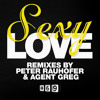 Residence Deejays-Sexy Love(Agent Greg remix)