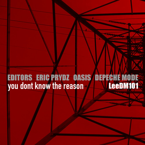 You Don't Know The Reason (Editors / Eric Prydz / Oasis / Depeche Mode)