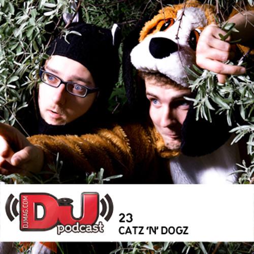 DJ Weekly Podcast 23: Catz 'N Dogz