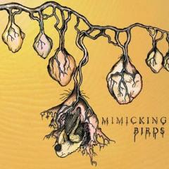 Mimicking Birds - Burning Stars