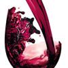 Extra Life-Crazy Wine