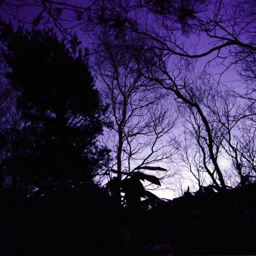 The Dark Side of Electro (February 2011) [DARK//DEEP//UNDERGROUND] [320kbit/s + TRACKLIST]
