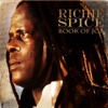 Richie spice - Got to Make it