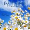 DJ Tatana - Spring Breeze (Bober's Summerstyle Intro Edit)