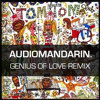 Tom Tom Club - Genius Of Love (Audiomandarin Remix)