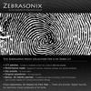 Zebrasonix - Pad Epic Square