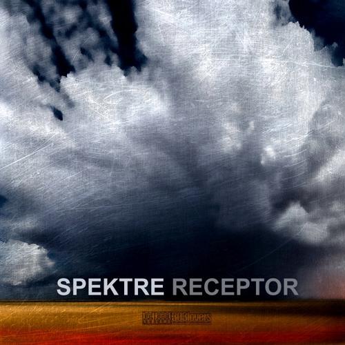 Spektre - Receptor (Sam Paganini Remix)  [303Lovers]