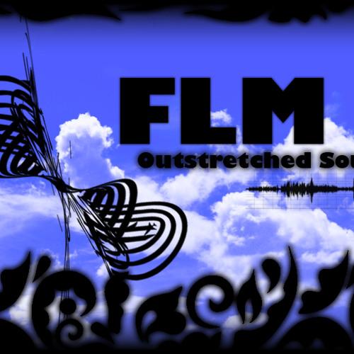FLM - Careful Freak (QR014)
