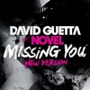 David Guetta - Missing You (Switching On Bootleg)