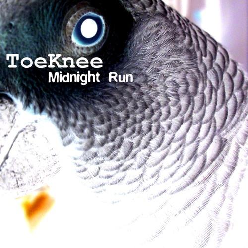 ToeKnee - Midnight Run