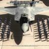 Ace Combat - Zero