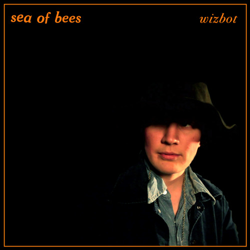 Sea of Bees - Wizbot (Conquering Animal Sound Remix)