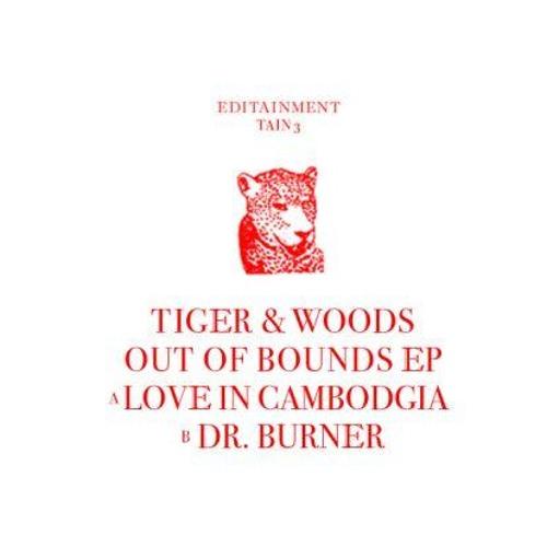 Tiger & Woods - Dr. Burner