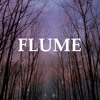 Flume - Over You ft. Jezzabell Doran mp3