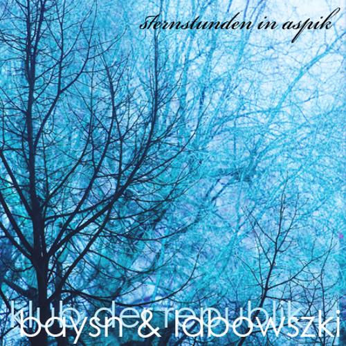 baysn & labowszki 2011.02.08 @ klub der republik