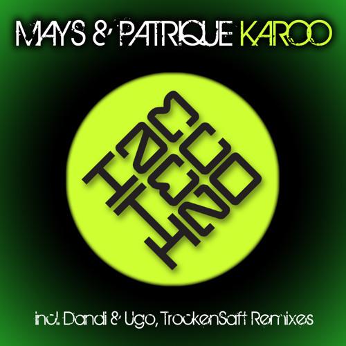 Mays & Patrique- Karoo (TrockenSaft Remix) DWN: http://tinyurl.com/24s9rto