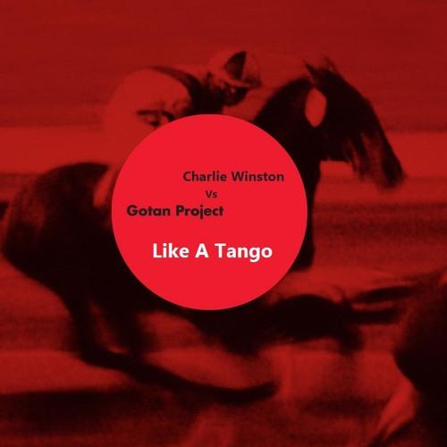 "Charlie Winston - ""Like A Hobo"" VS Gotan Project - ""Diferente"" MASHUP!!"