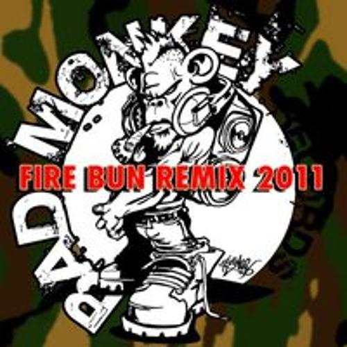 Erb N Dub - Fire Burn (Electromagnetic Impulses Remix)