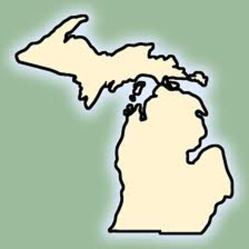 Michigan Dub & Electro