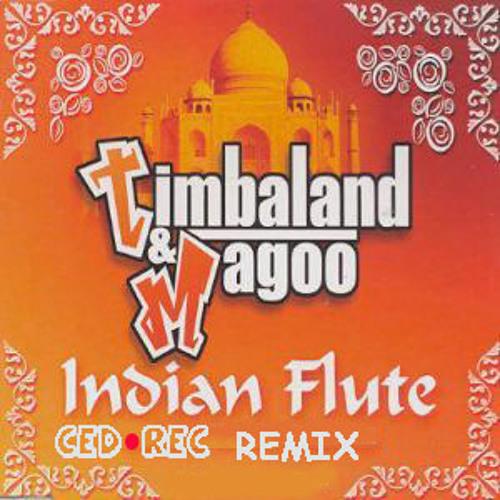 TIMBALAND-Indian flute (CED.REC remix)