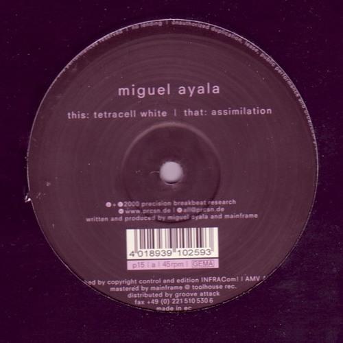 Miguel Ayala - Assimilation