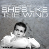 Brisby & Jingles - She´s Like The Wind (Radio Edit)