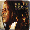 Richie Spice - Jah Never Let Us Down